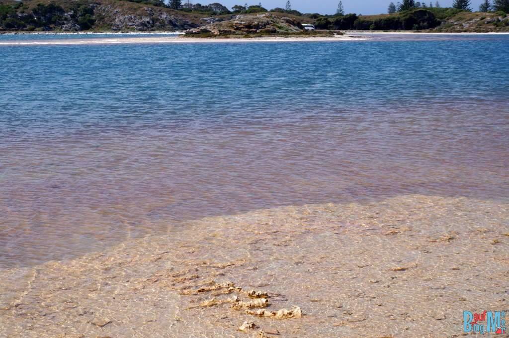 Blau rosa Schattierungen des Pink Lake auf Rottnest Island