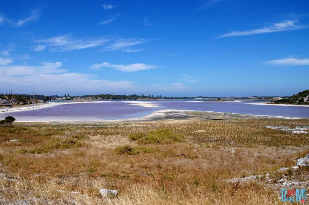 Pink Lake auf Rottnest Island