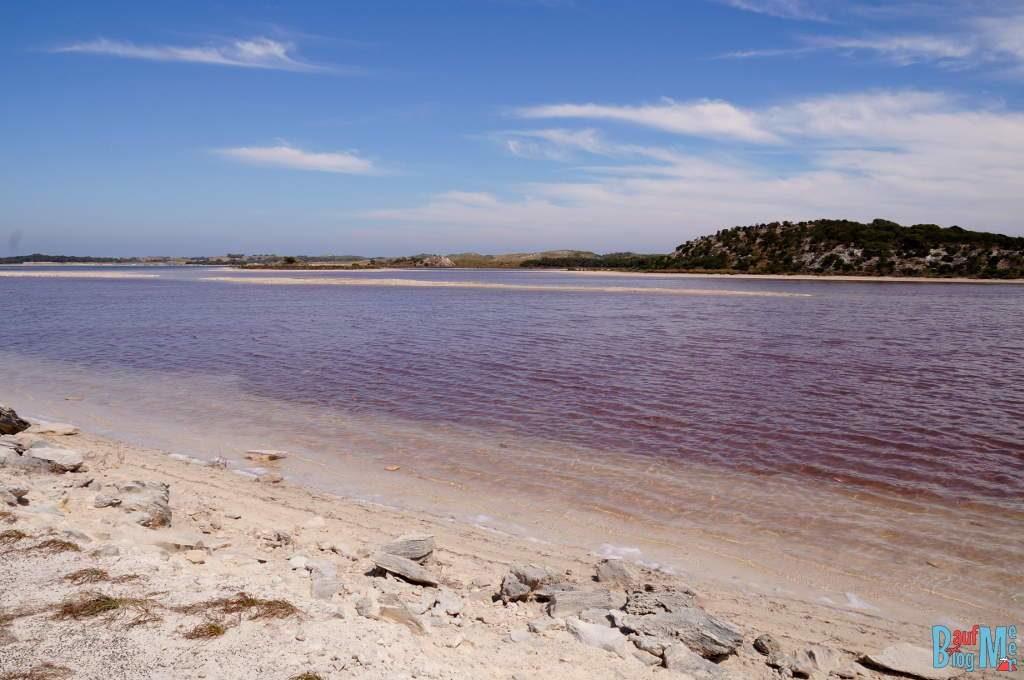 Pinker See mit violett rosa Schattierungen auf Rottnest Island