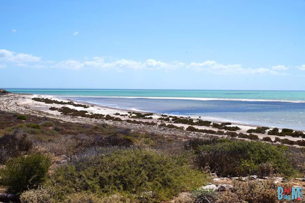Ausblicke auf dem Weg zum Shell Beach