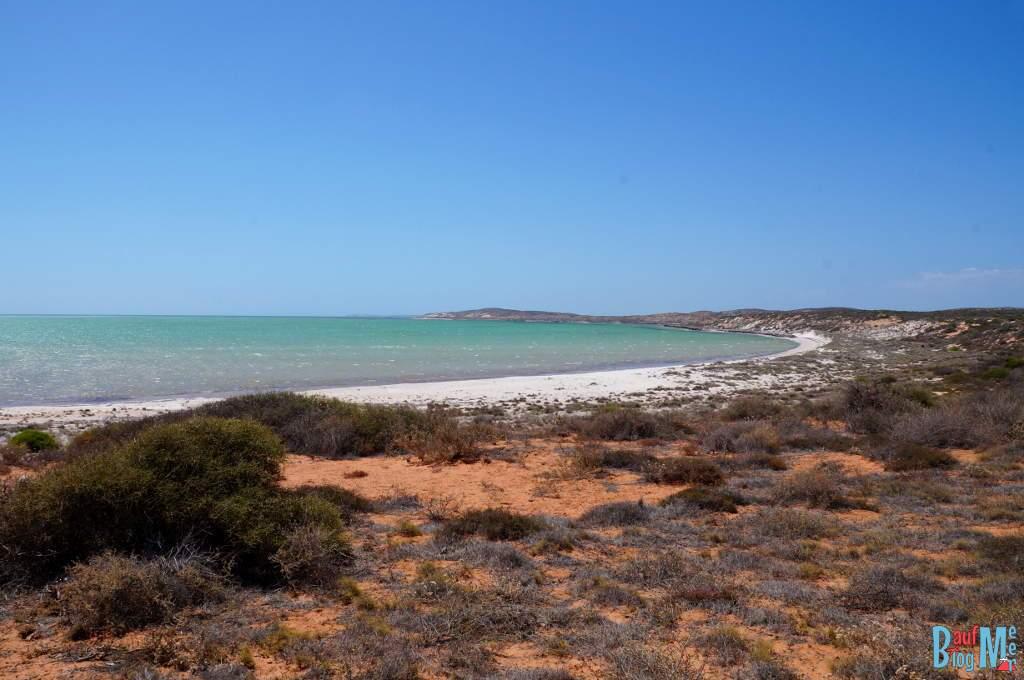 Strand in der Nähe des Shell Beach