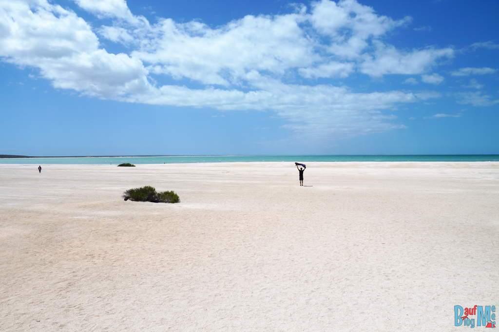 Auf dem Weg zum Meer am Shell Beach