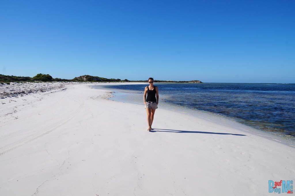 Strandspaziergang am Morgen beim Milligan Island Camping Platz