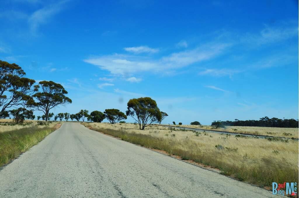 Asphaltstraße im goldenen Outback