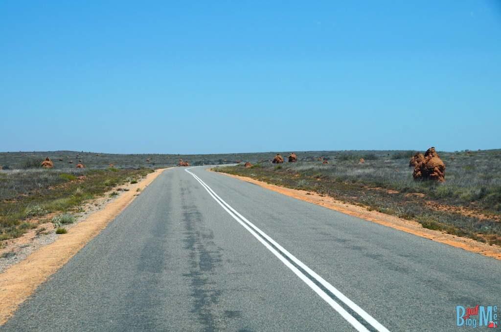 Riesen Termitennester entlang der Straße in Nordwest Australien