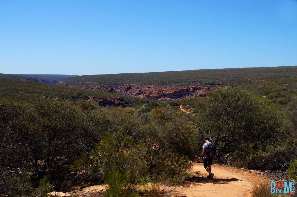 Auf dem Z Bend River Trail im Kalbarri Nationapark