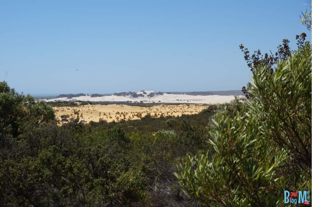 Ausblick auf die orangene Pinnacles Desert und dahinter eine weiße Düne auch Teil des Nambung Nationalparks