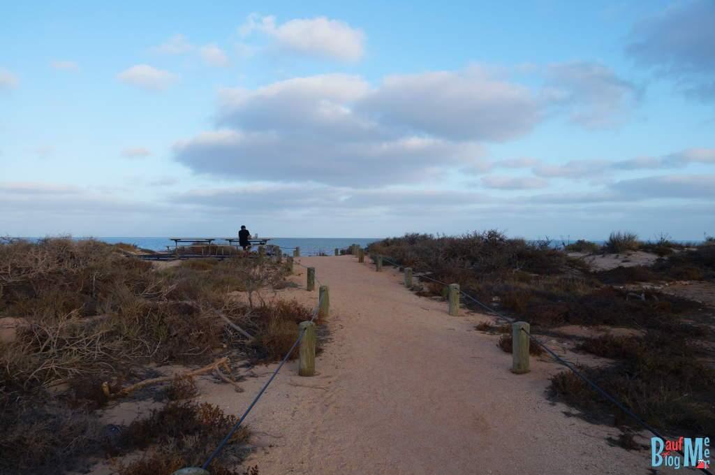 Weg zum Strand vom Yardie Camp Ground