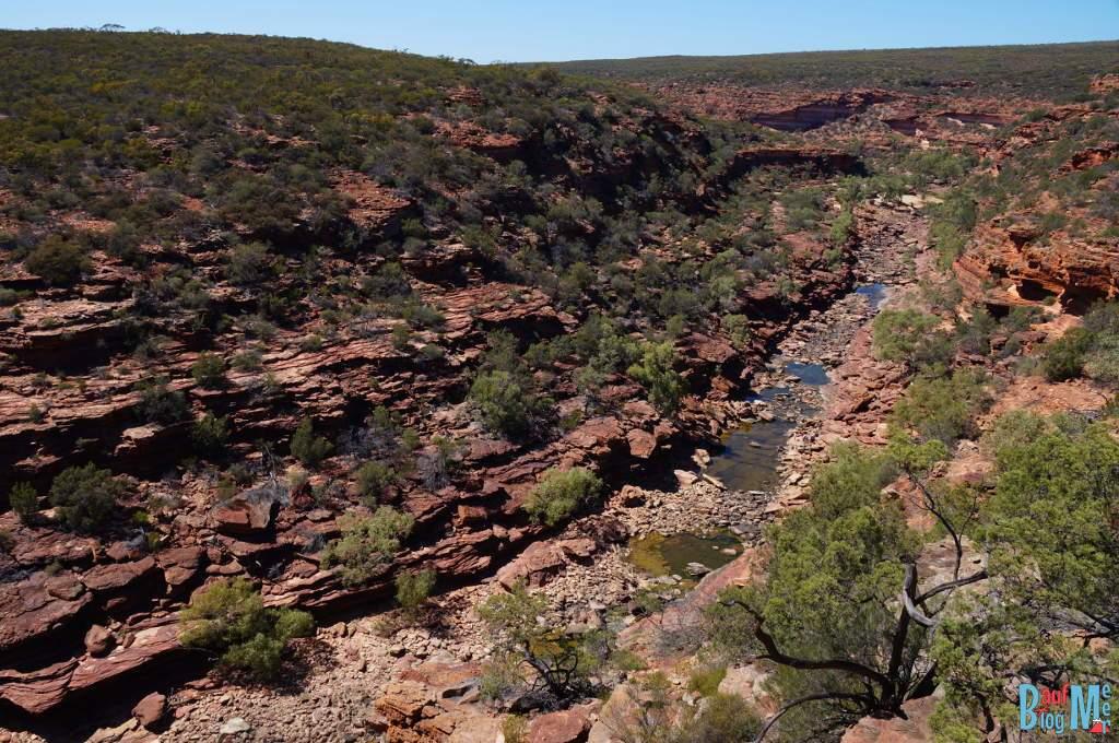 Ausblick auf den Z Bend des Murchison Flusses im Kalbarri Nationalpark