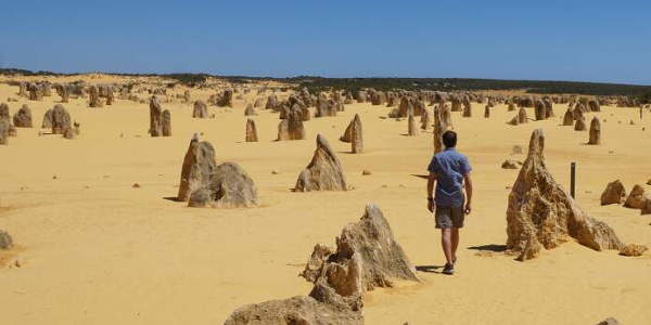 Pinnacles Nambung National Park