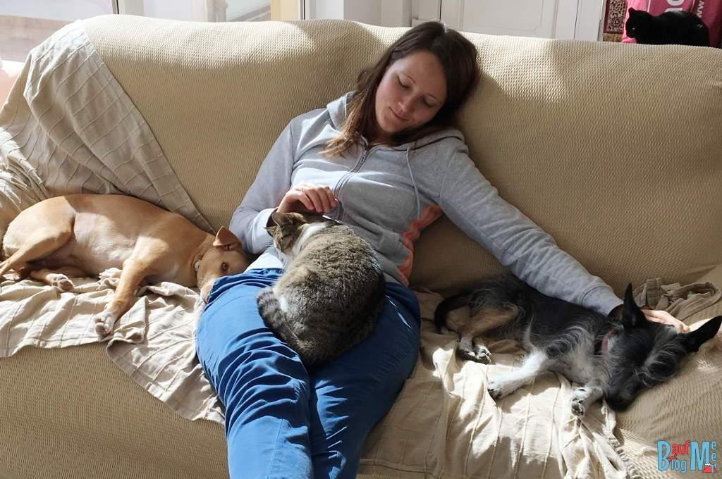 House Sitting Erfahrung: Kuscheln mit Katze und Hund