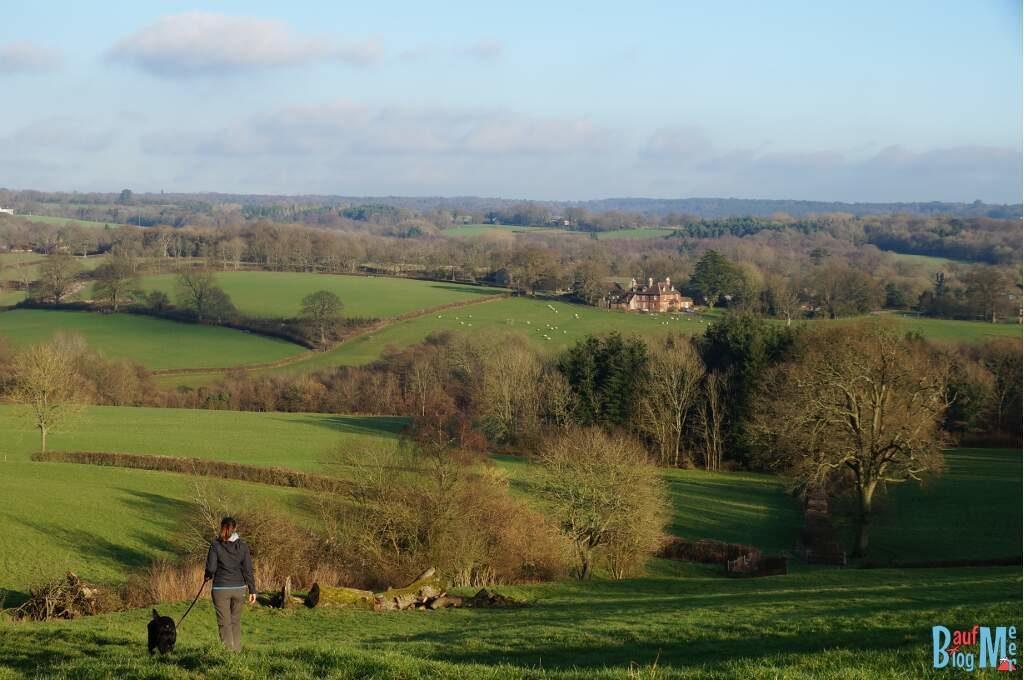 Schöne Landschaften zum Gassigehen bei unserem House Sit in Süd-England