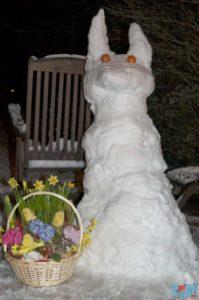 Ein Schneehase an Ostern. Da wird der Śmigus-dyngus etwas kalt