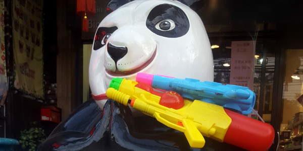 Songkran Panda in Chiang Mai