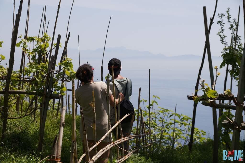 Ausblicke auf Capri bei der Wanderung bei Pancrazio auf Ischia