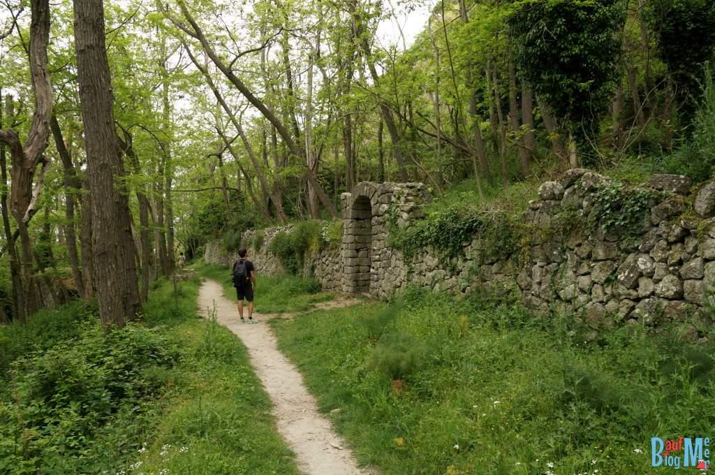 Mauerwerk im Wald von Falaga auf der italienischen Insel Ischia