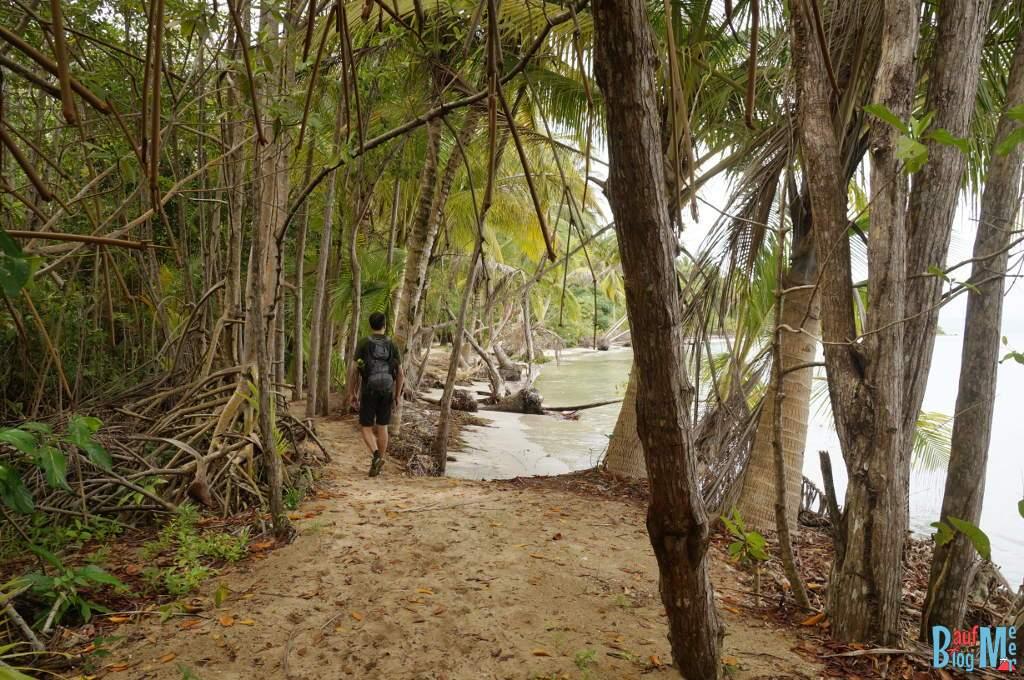Pfad von Boca del Drago zur Playa Estrella in der Regenzeit