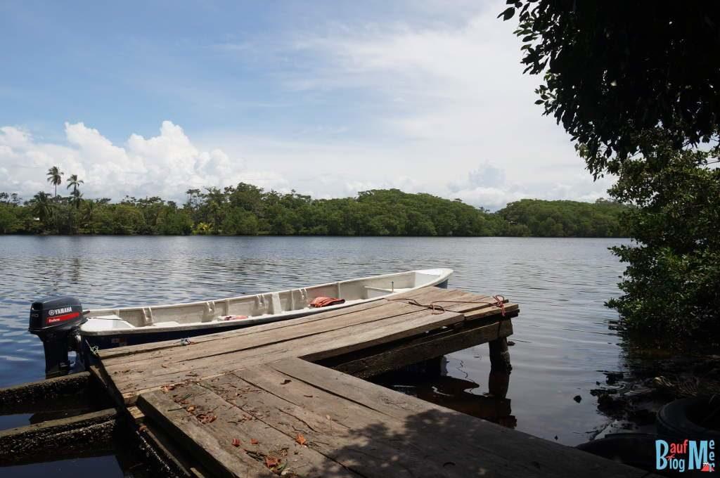 Bootssteg bei Tag im Fluss gibt es Seekühe