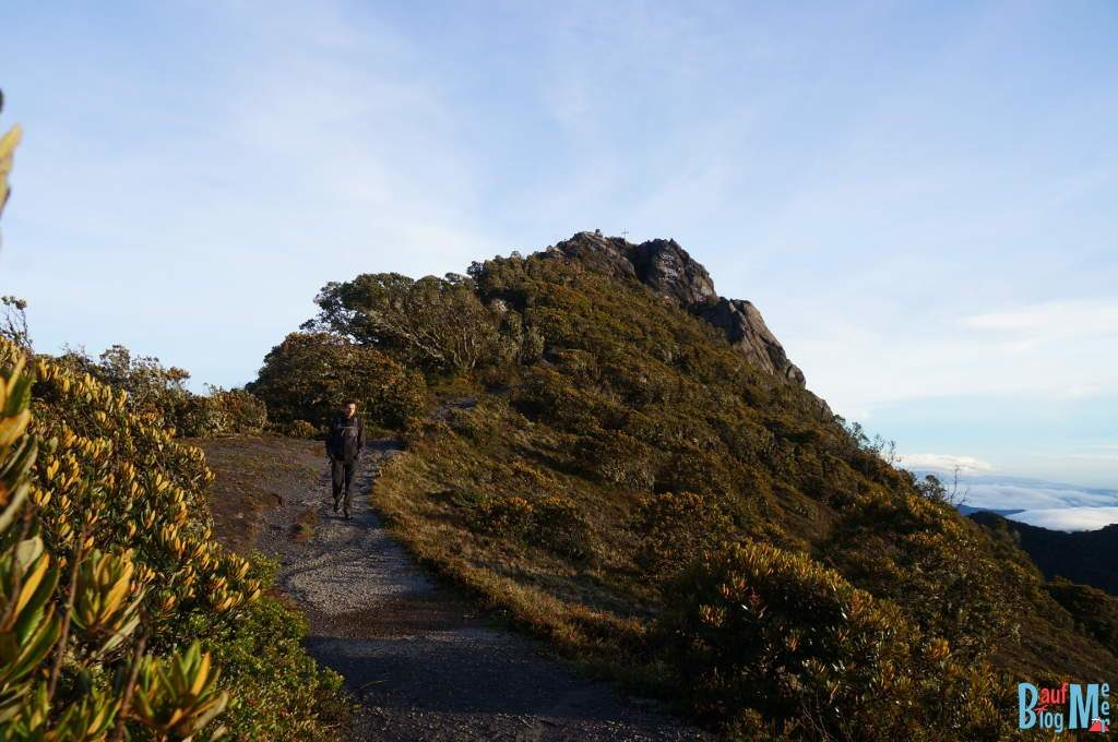 Die letzten Meter zum Gipfel des Volcan Baru (hier schon beim Abstieg)