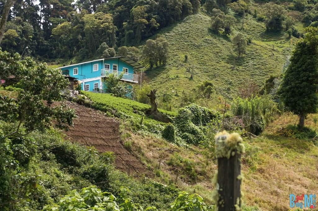 Felder und Haus auf dem Weg zum Sendero los Quetzales