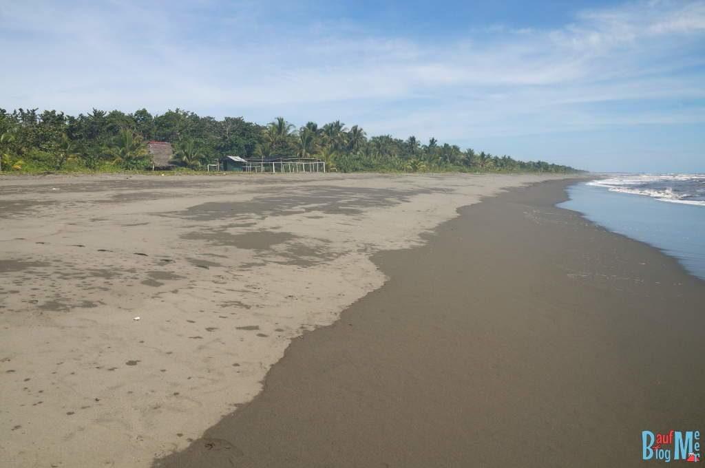 Strand beim Humedal San San Pond Sak wo Seekühe leben