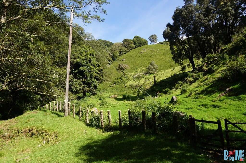 Wiesen entlang des Wanderweges vom Volcan Baru