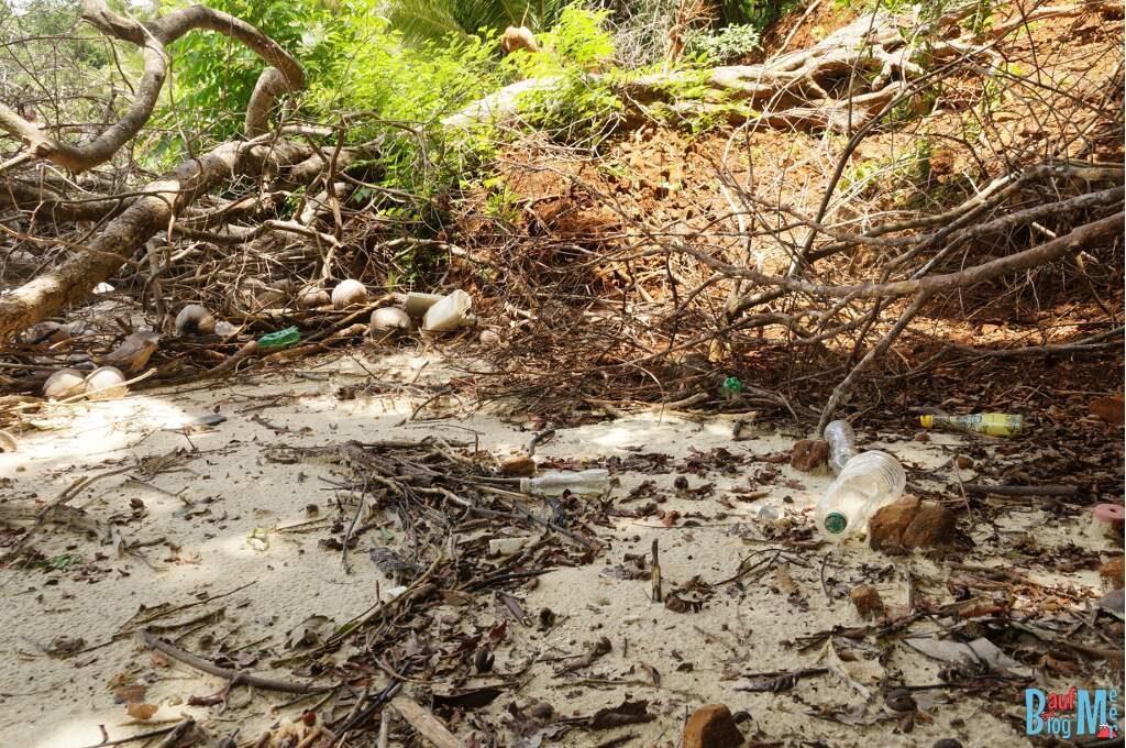 Müll im Gebüsch der Isla Bolana im Golf von Chiriqui