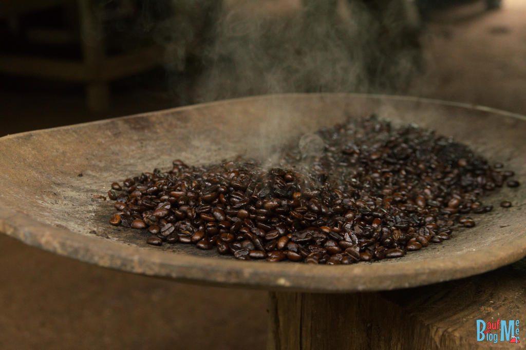 Frisch gerösteter Kaffee bei einer Kaffeetour in Boquete Panama