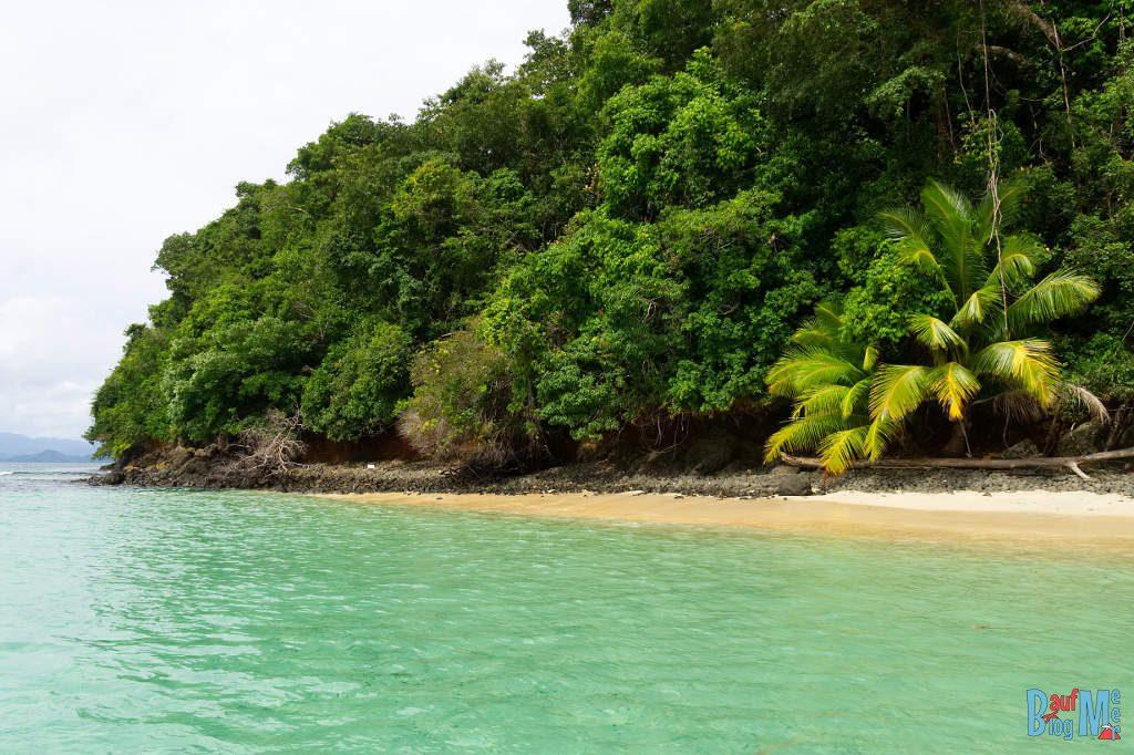 Palmenstrand und grünes Meer vor Coiba Panama