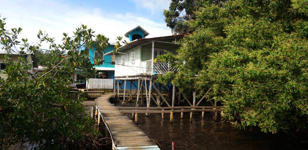 Reisezeit Panama: auch in der Regenzeit ist Bocas del Toro fantastisch