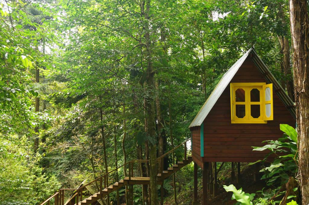 eine Hütte der Nomad Tree Lodge in Bocas del Toro