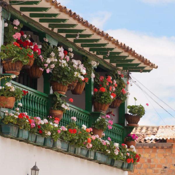 Blumiger Balkon in Villa de Leyva