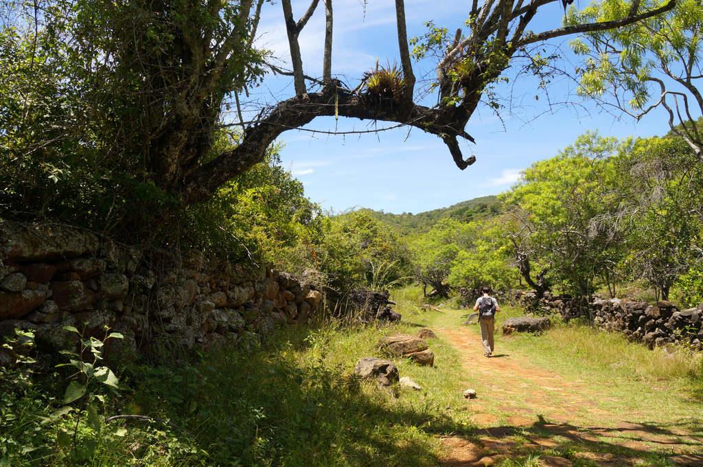 Auf dem Camino Real nach Guane