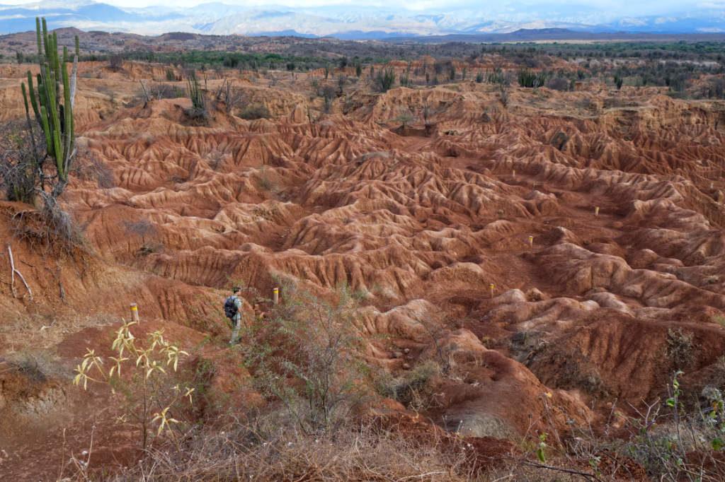 Aussicht auf die rote Tatacoa Wüste