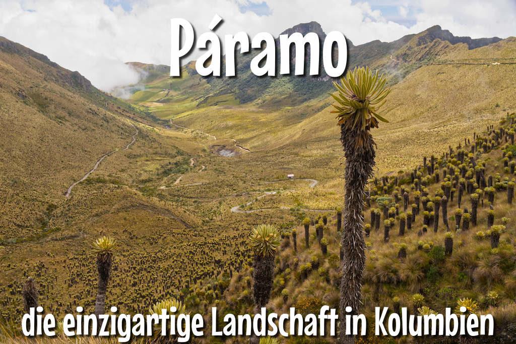 Paramo die einzigartige Landschaft