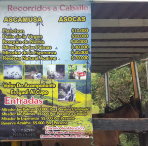 Reitpreise Valle de Cocora