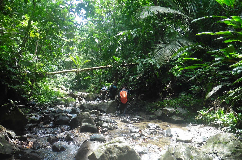 Das Flussbett dient als Pfad bei der Durchquerung des Darien Gaps